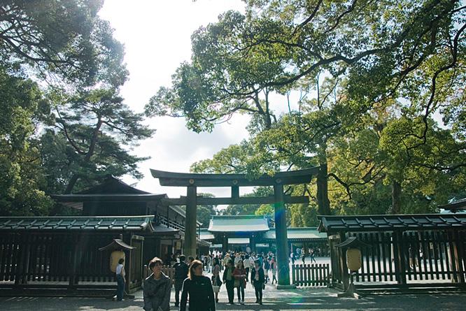 Japan, Tokyo, Shinto shrine