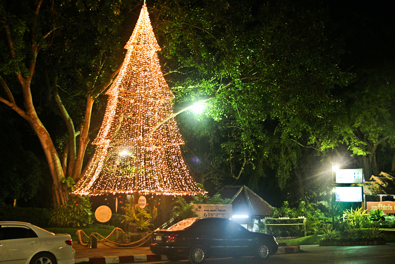 Invincible Christmas trees in Thailand