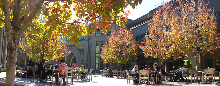 why berkeley haaas for mba courtyard Is MBA worth it?